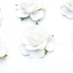 12 Roses autocollantes blanches