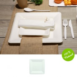 25 petites assiettes carrée Biodégradables