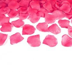 500 Pétales de Rose Fuchsia