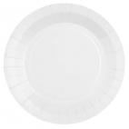 10 Grandes assiettes en carton biodégradables