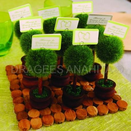 Marque place arbuste