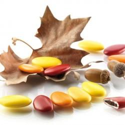 Dragées originales bordeaux  et orange les dragées d'automne
