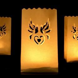 Lanterne photophore colombe X 10