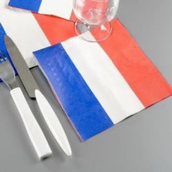 20 serviettes de table mariage thème France